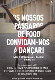 destaque_noticia
